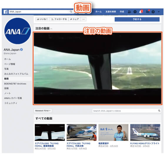 Facebookページのタブの種類|動画タブ2